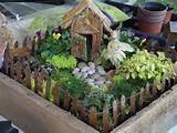 Fairy Garden Container Ideas As usual, bring a container if