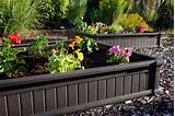 Precious Colorful Flowers Dark Raised Flower Bed Green Shrubs