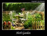 herb garden design – herb garden nature and garden [640x489 ...