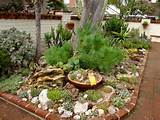 Succulents Garden Decoration Design : Mind Blowing Succulents Garden ...