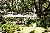 Garden Wedding Ideas Pictures
