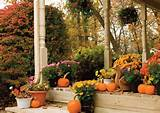 ideas for some flowers and shrubs that will look awesome this Fall ...