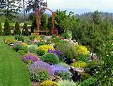 landscaping landscape plan landscaping ideas cheap landscape ideas