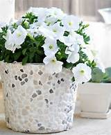 diy flowerpot garden world diy flower pot art covered with pebbles or
