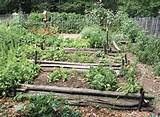 rustic simplicity defines the style of the vegetable garden at our