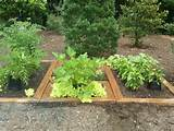 best herb garden design ideas and plans