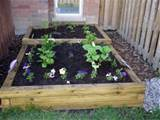 raised flower bed via mythos rini