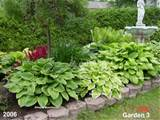 ... pics are from 2 of my 25 garden beds to see the rest of my gardens you