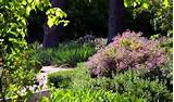 garden ideas home country home garden ideas country house garden ideas