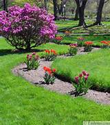 spring flowers and yard landscaping ideas 20 tulip bed design ideas