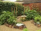 filed in small garden ideas