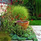 fence-garden-garden-ideas-rustic-rustic-garden-fence-ideas-rustic ...