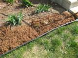 ... Dirt » Blog Archive » Fun with mulch - plastic garden edging 2012