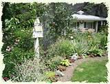 Birdhouses are a classic garden feature.