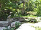 ... this inexpensive landscape idea the seagull add landscape s wilderness