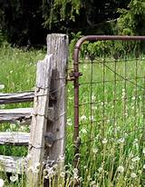 Outdoor Ideas - Rustic fence