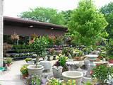 -nursery-san-antonio-tx-landscape-nursery-landscape-nursery-garden ...