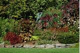 ideas no comments tags low maintenance landscaping ideas