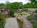 beautiful backyard garden in texas with native and adaptive plants