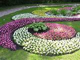 Check out other gallery of Beautiful Backyard Flower Gardens