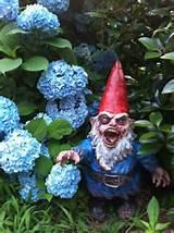 gnombie-zombie-garden-gnome-anao-de-jardim-anao-de-jardim-zumbi-zumbi ...