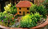 Mini Garden Ideas