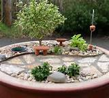 the mini garden guru your miniature garden source