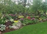 hosta landscaping