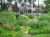 Planting and Garden Design: Trees, Shrubs and Flowers add Beauty to ...