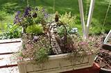 fairy garden ideas | fairy garden