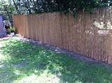 Image Gallery Seven Very Cheap Garden Fence Ideas Gardening Tips n
