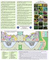 image search landscape design software landscape wizard