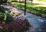 related flower bed designs flower bed ideas front of house