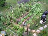 garden ideas - small vegetable garden design backyard vegetable garden ...