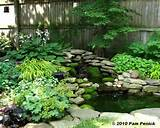 Shade Garden Ideas Hostas Photograph Gardens : This Back Ya