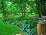 Related Best Shade Garden Design Ideas