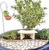 cool and fresh indoor gardening ideas astonishing indoor gardening