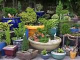 mini indoor garden for garden design miniature indoor fairy garden