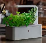 The Click & Grow Smart Herb Garden brings the garden inside the house.