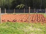 garden fencing ideas - easy garden fence plans garden guides [800x599 ...