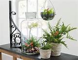 com shop accessories decor garden style decor garden style