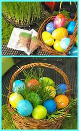 Plant your own Easter Grass DIY project / Pike Nurseries