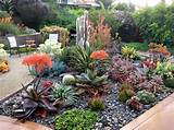 succulent gardens front yards dreams gardens flowerpot yards ideas