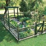 vegetable garden fence ideas | Home Designs Wallpapers