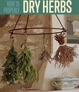 herb garden tips how to dry herbs diy projects creative crafts
