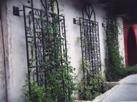 Garden Trellis Ideas Pictures | Native Garden Design