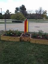 pin by katie abolt on art ed school garden ideas pinterest