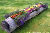 flower log garden ideas pinterest