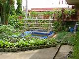 container vegetable garden ideas home design collection