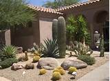 colorful arizona xeriscaping landscaping design desert crest llc